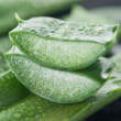 Four Amazing Uses for Aloe Vera
