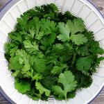 Studies Find That Cilantro Can Chelate Heavy Metals from the Body