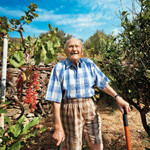 Blue Zones: Lessons from the World's Longest-Living People