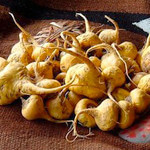 Maca Root: The Aphrodisiac of the Amazon