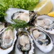 A List of Foods Rich in Zinc: From Oysters to Pumpkin Seeds